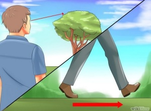 Courtesy of Wikihow http://www.wikihow.com/Measure-the-Height-of-a-Tree