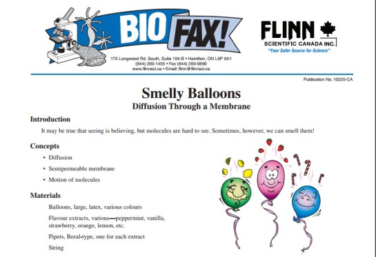 smelly balloons intro