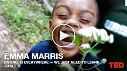 Emma Marris: Nature is everywhere — we just need to learn to see it   TED Talk  TED.com