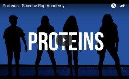 Proteins – Science Rap Academy