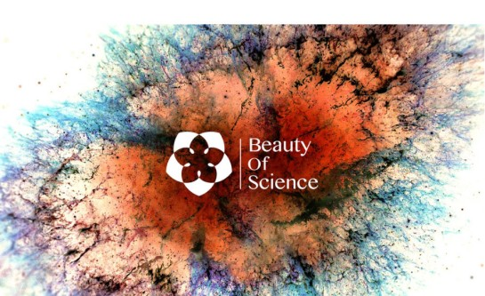 beauty-of-science