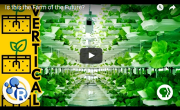 Is this the Farm of theFuture?