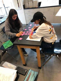Stacks of Kinematics Curves as a Card Sort – submitted by Joanne O'Meara of the STAO CurriculumCommittee