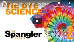 The Science of Tie-Dye | Science Experiments | Steve SpanglerScience