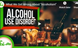 """(1) What We Get Wrong About """"Alcoholism"""" –YouTube"""