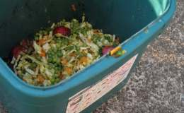 What really happens to the organic waste you put in your compost bin   CBCNews
