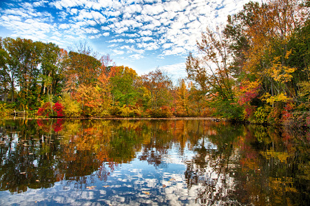 48075140 - the changing leaves bring splashes of color to the historic kirby's mill pond in medford, nj.