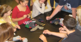 Student Activity: SockMitosis